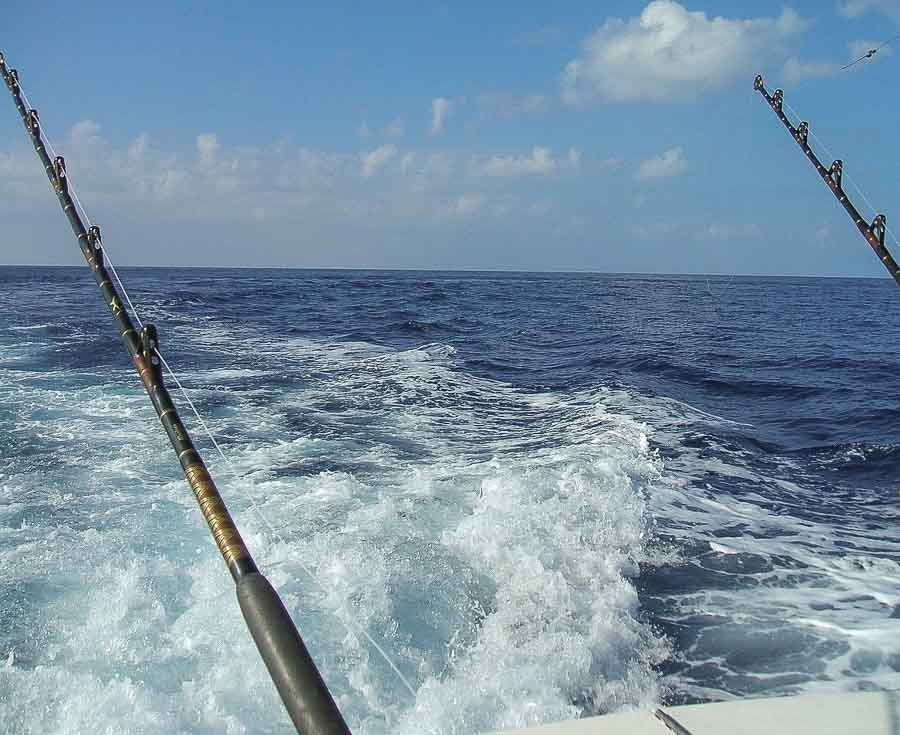 deep sea fishing off Maui's coastline