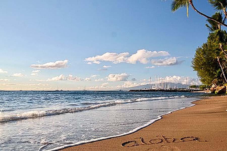 Show aloha get aloha while Living in Hawaii