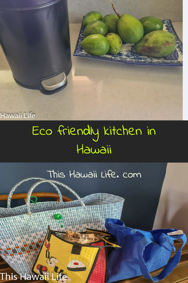Pinterest image of an eco friendly kitchen in Hawaii