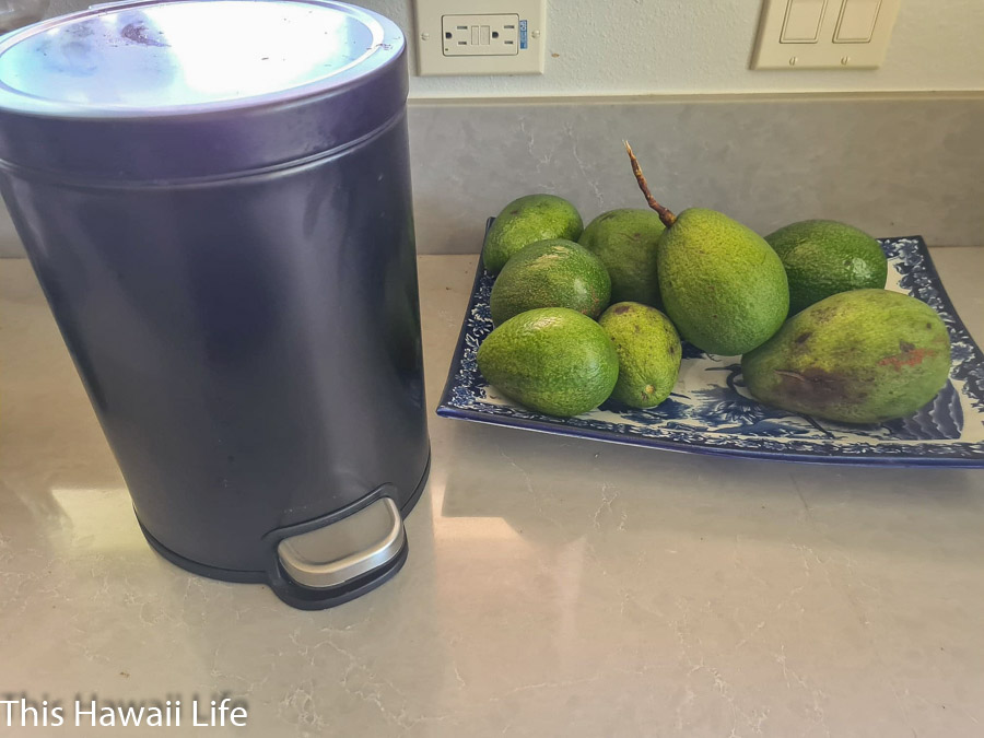 Compost your green waste in an Eco friendly kitchen