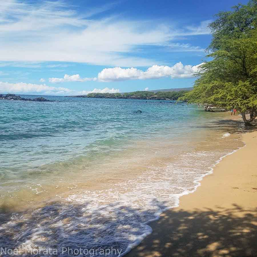 Hawaiian lifestyle, current events, trends, real estate, shopping and living in Hawaii