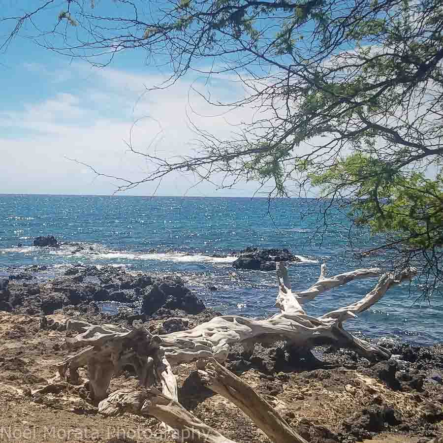 Makalawena beach on the Kohala coast Big Island