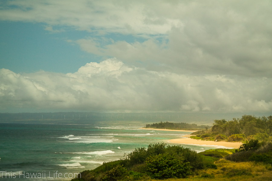 Gorgeous north shore beaches in Oahu