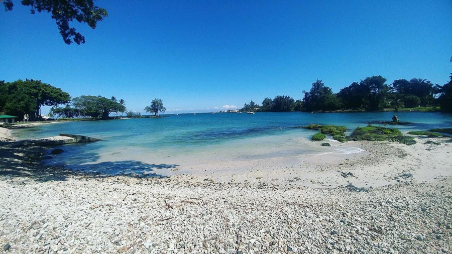 Reeds bay park snorkeling experience