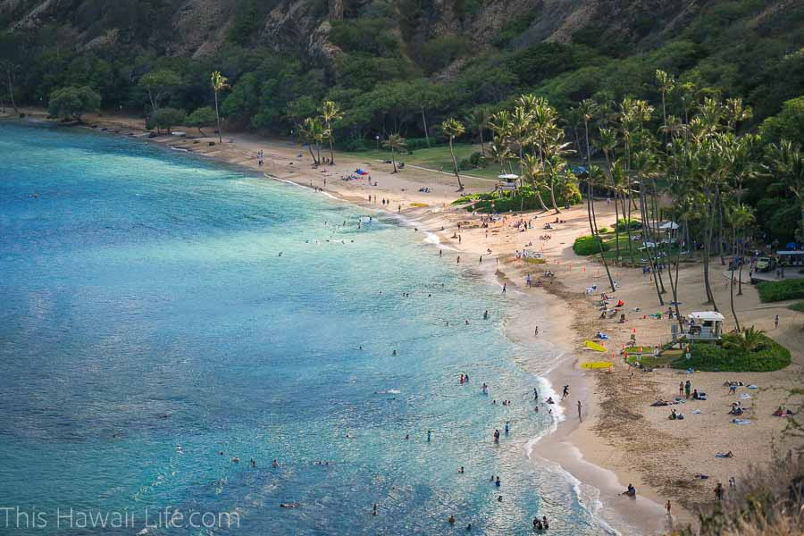 Things to do in Waikiki Hanauma Bay