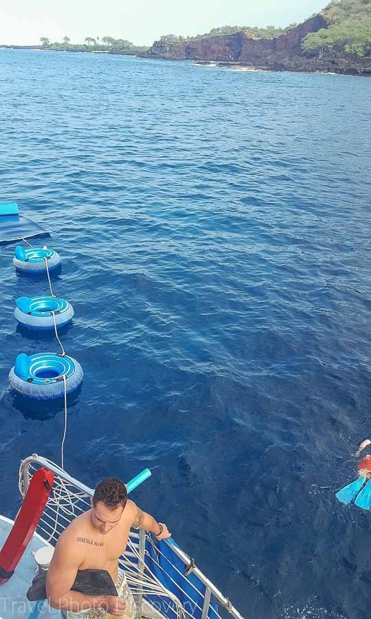 Diving around the kona coastline