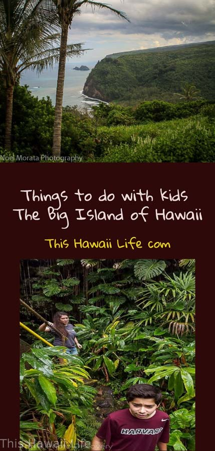 Pinterest Family friendly Visit to the Big Island