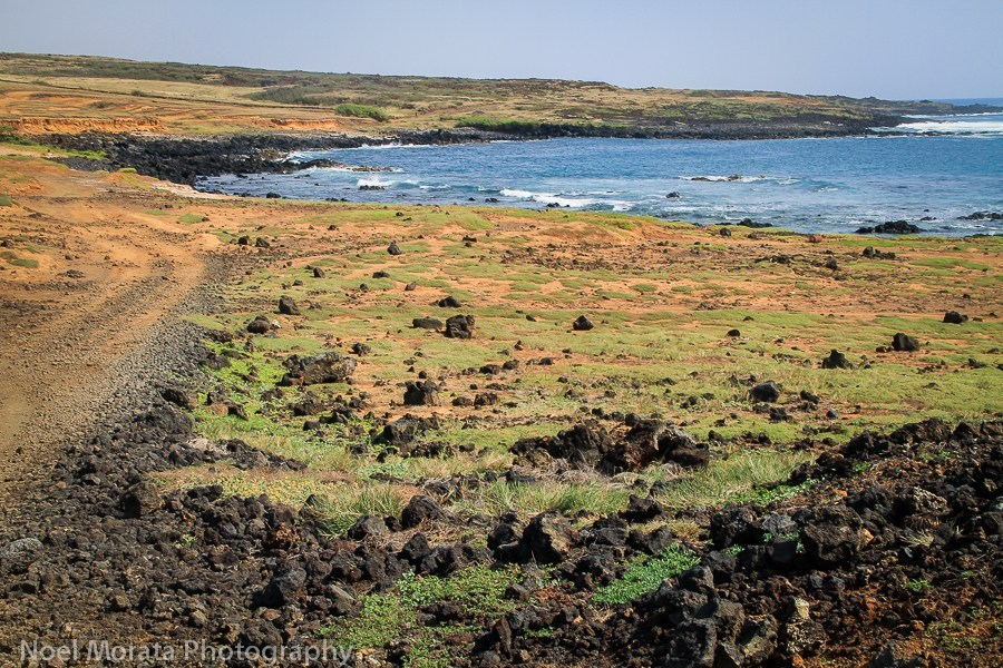 Coastal hike to the green sand beach big island