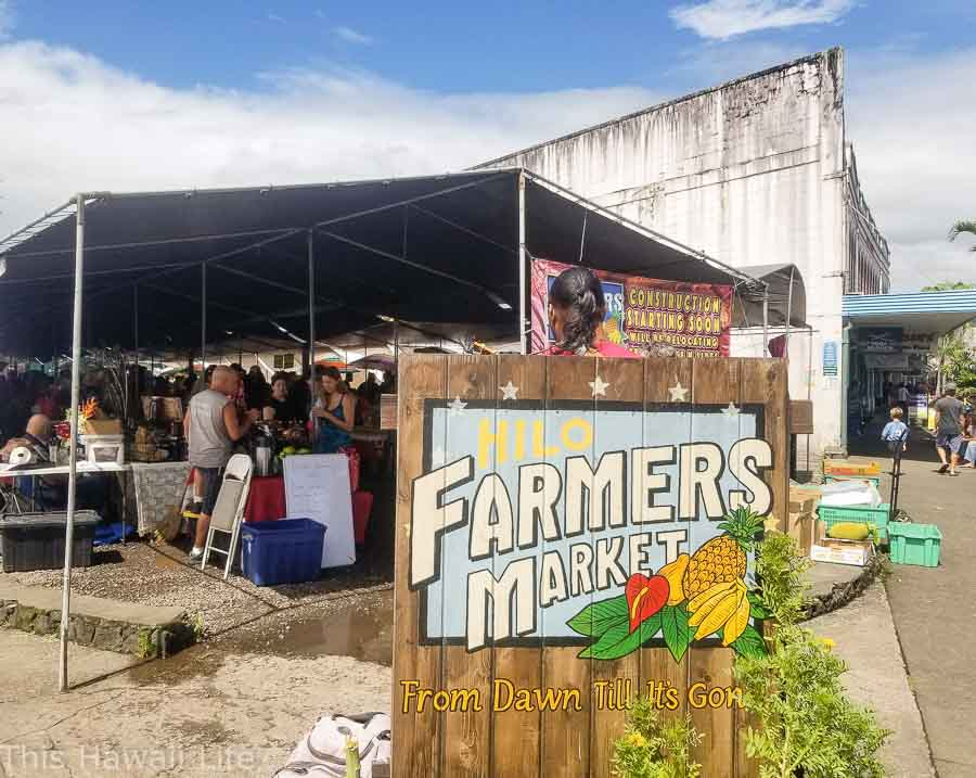 Visiting the Hilo farmers market photo shoot