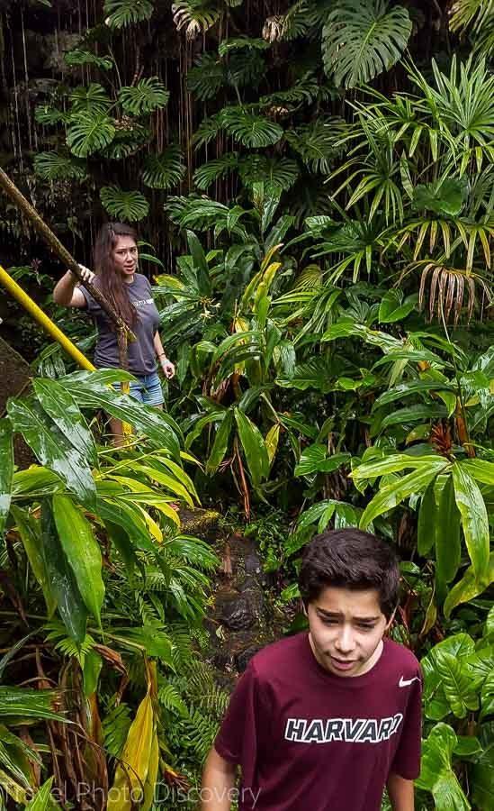 Exploring Kaumana cave with kids