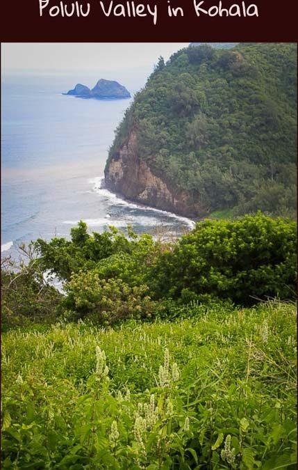 Big Island hike to Pololu Valley