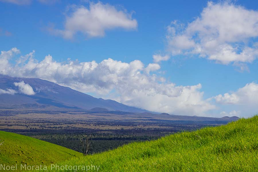 Reaching the top of Pu'uwa'awa'a