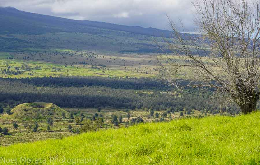 Views from the top of Pu'uwa'awa'a