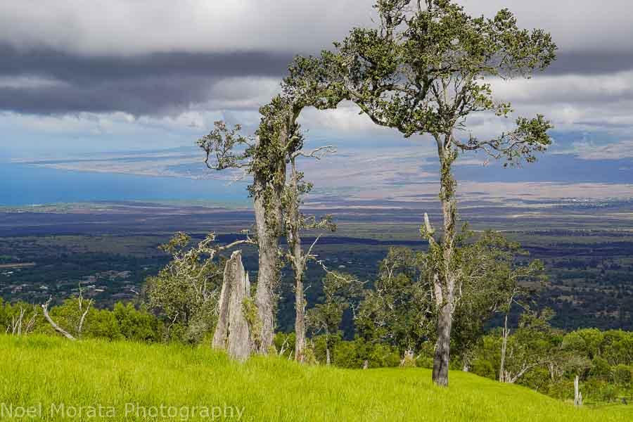 hike to the top of Pu'uwa'awa'a