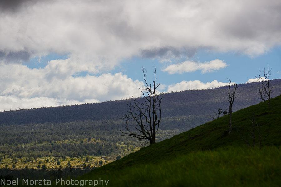Gorgeous panoramas from Pu'uwa'awa'a