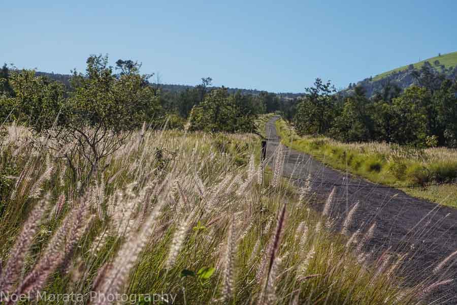 base asphalt trail at Pu'uwa'awa'a
