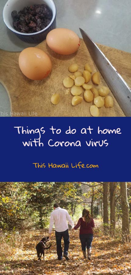 Pinterest Things to do at home with Coronavirus in Hawaii