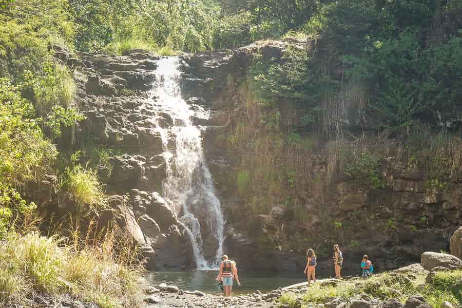 HIke to Waimea waterfall at Waimea Valley Botanical Garden