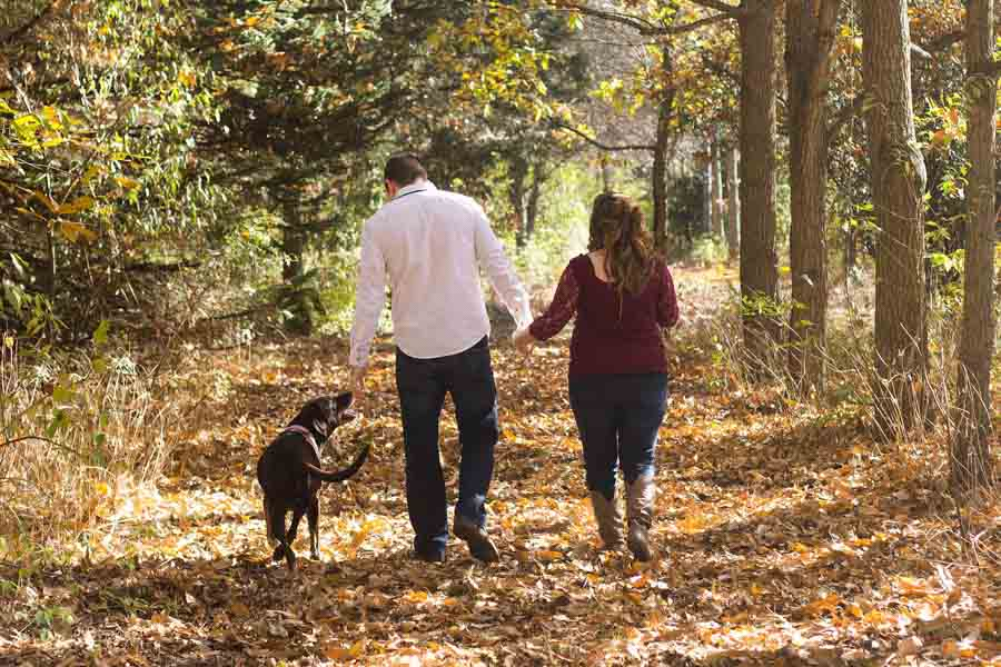 hang out with your pets to stay healthy