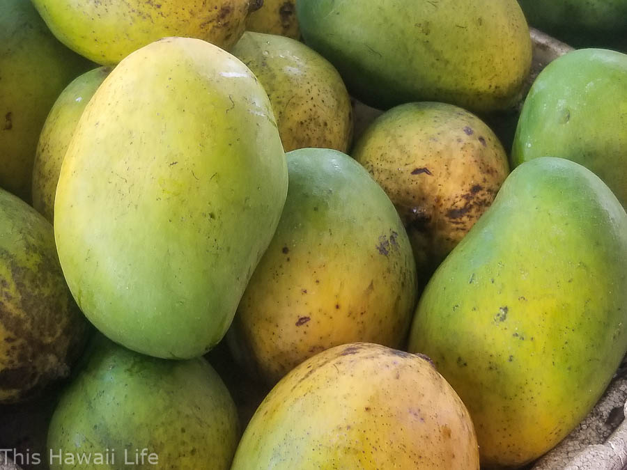 Fresh mangoes for sale at the farmers market