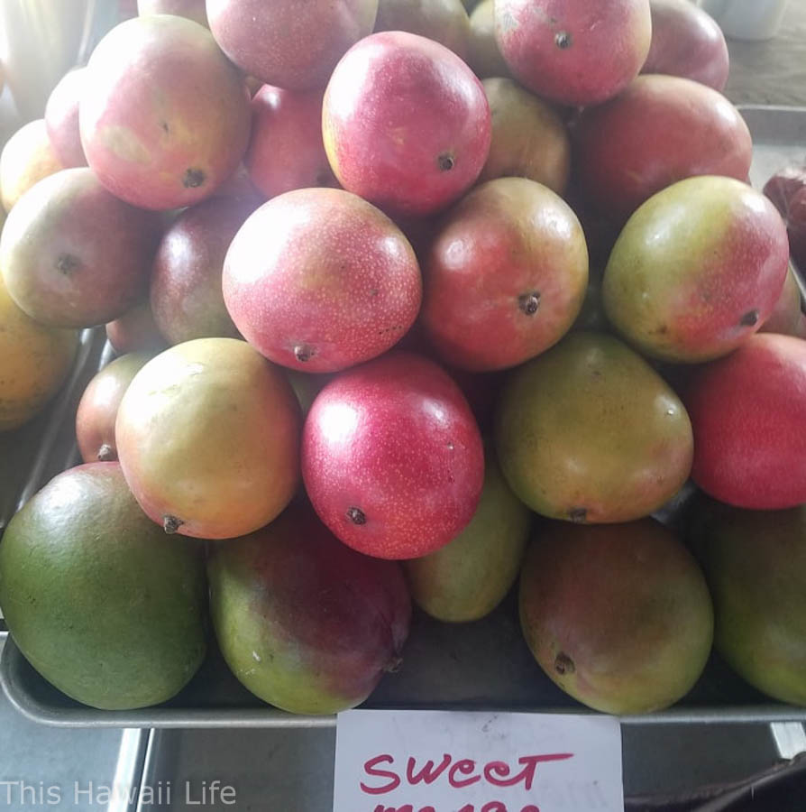 fresh ripe mangoes in Hawaii