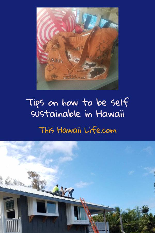 Pinterest Self Sustainable in Hawaii