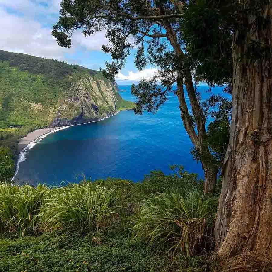Waipio lookout on the Big Island for free