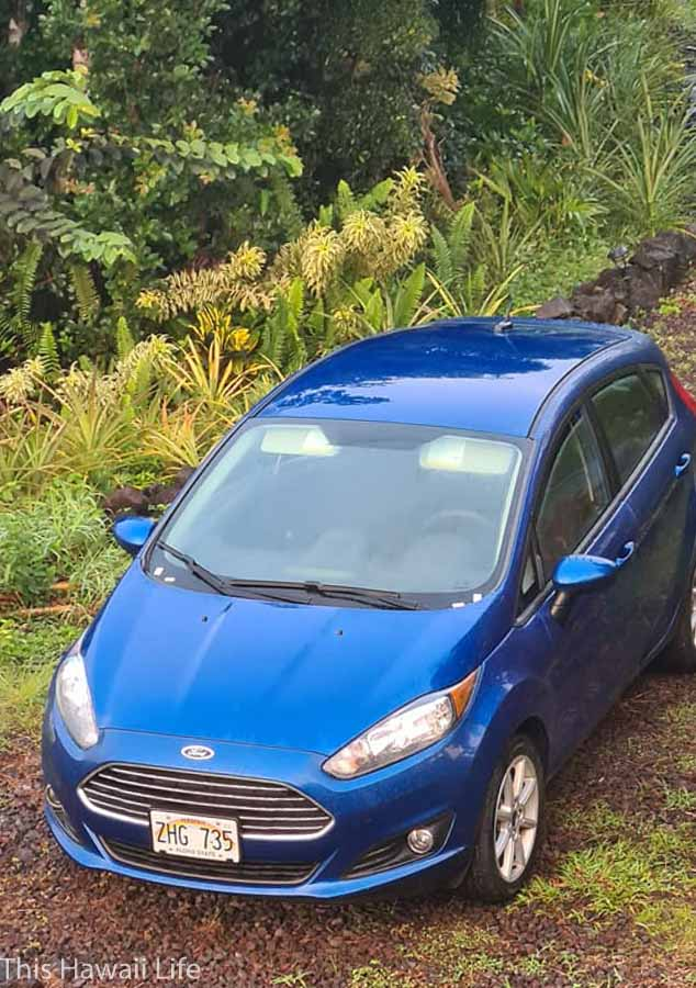 How to save on your car rental costs for Hawaii