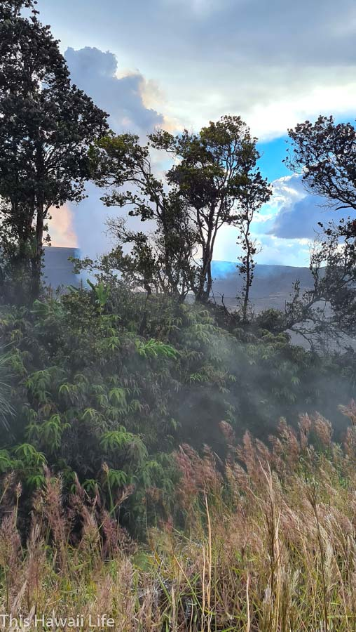 Hike the trails for different viewings of the Eruption at Kilauea here at the steam vent area