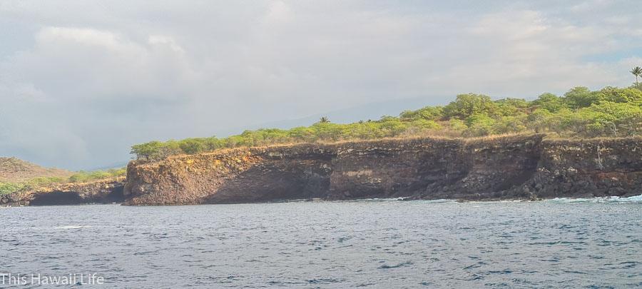 Red rock snorkeling marine preserve