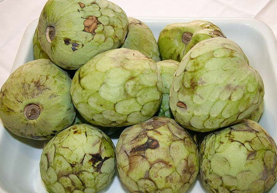 Delicious Cherimoya from Hawaii