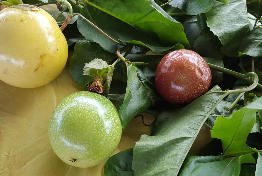 Passion fruit or Hawaiian lilikoi from the islands