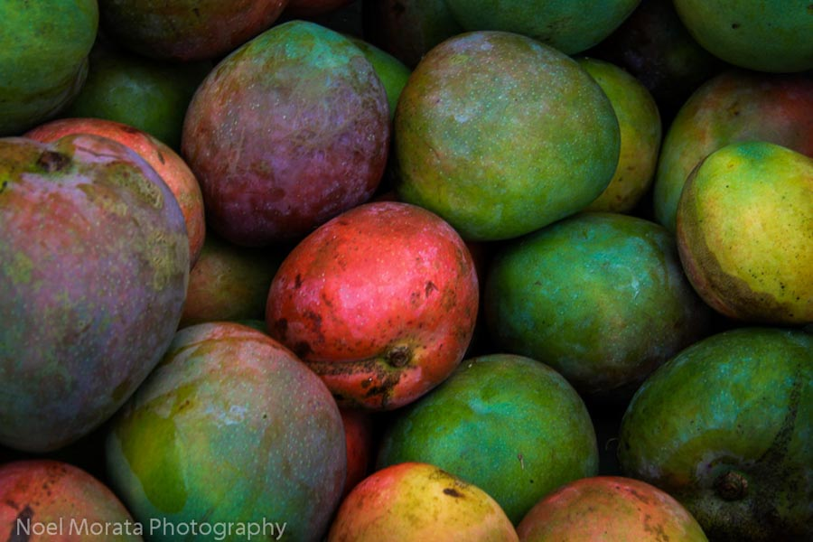 Hawaiian mango in season on the islands