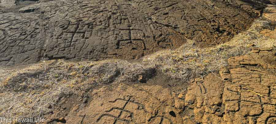 Other details and information about Hawaiian Petroglyphs