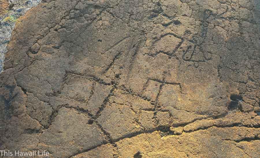 Mauna Lani Petroglyphs 40