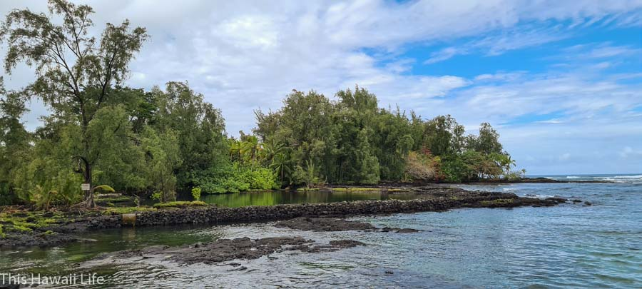 Further reading to visiting Hilo and surrounding areas in East Hawaii