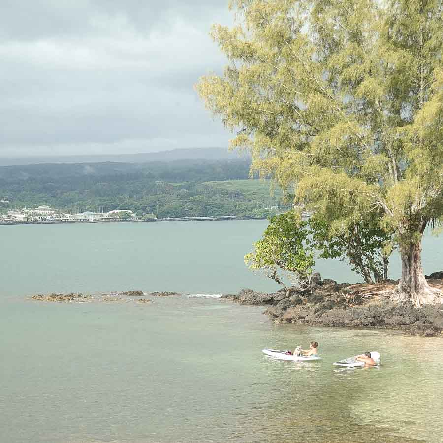 What to see and do visiting Coconut Island
