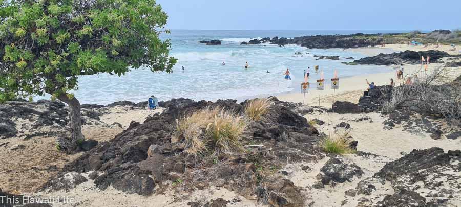 kua bay manini'owalli beach