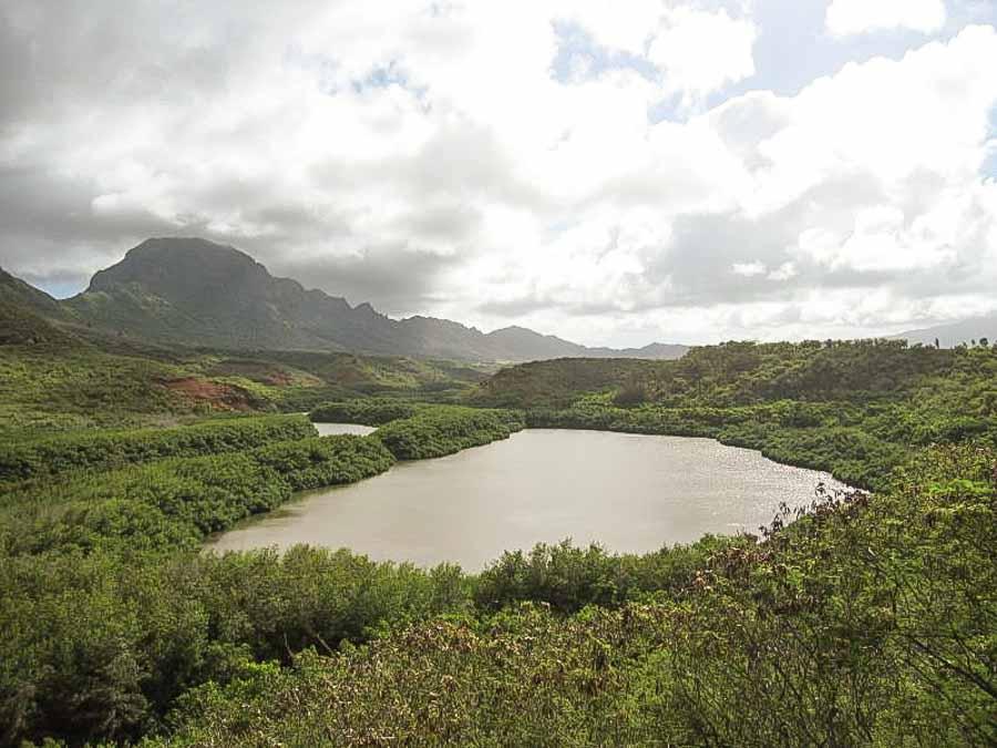 visit the Akeko Fish pond