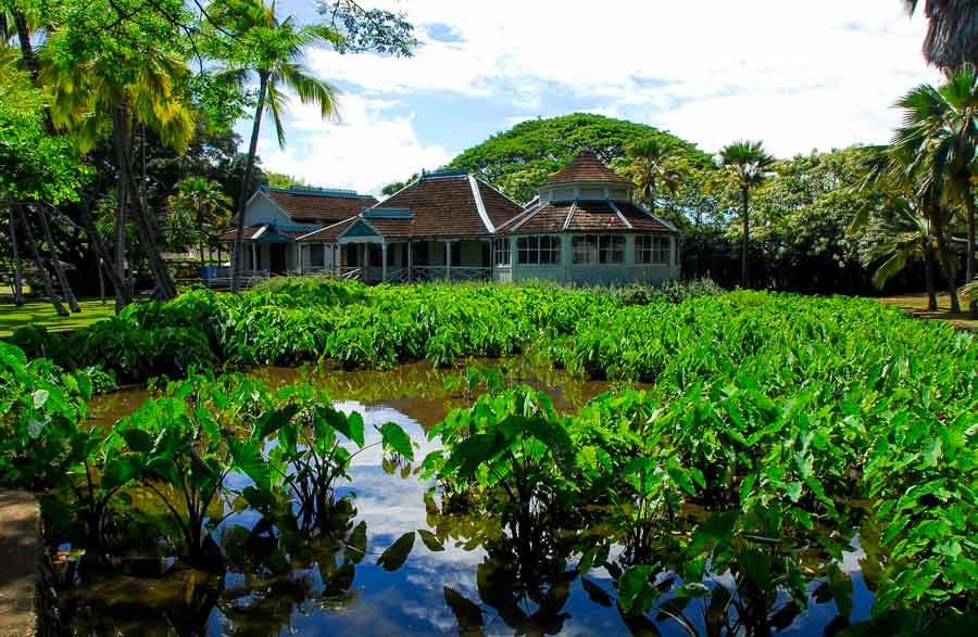 Moanuloa Gardens