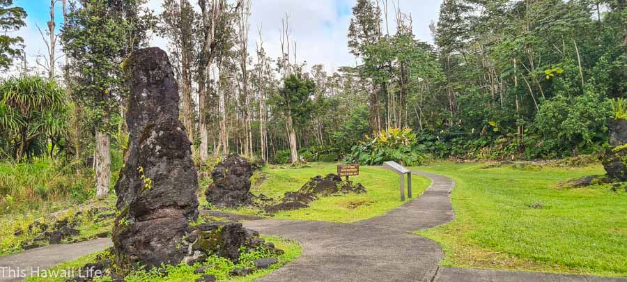 Why visit Lava Tree State Park?