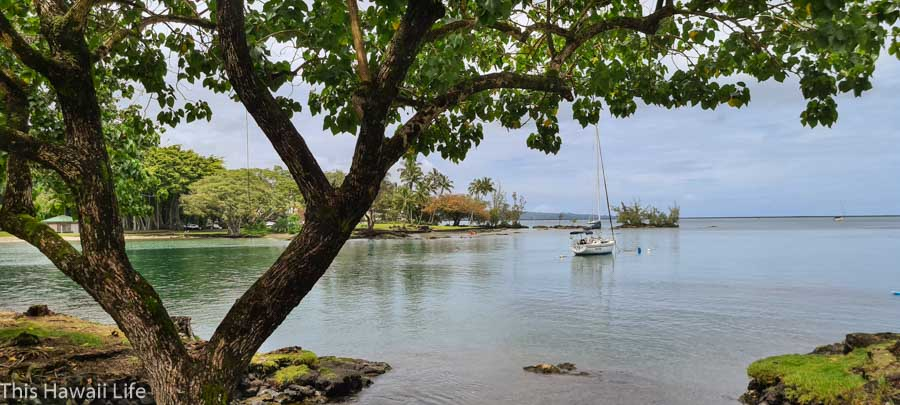 Family friendly fun at Reeds Bay Beach Park in Hilo, Hawaii