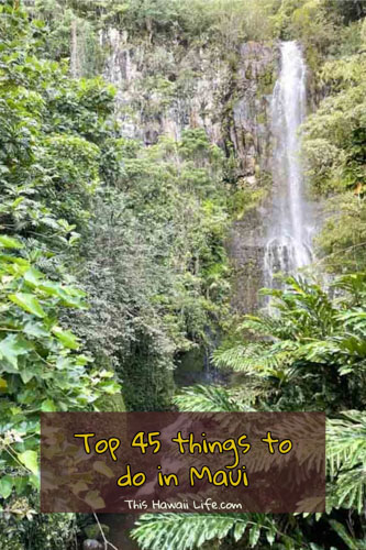 Pinterest top 45 things to do in Maui