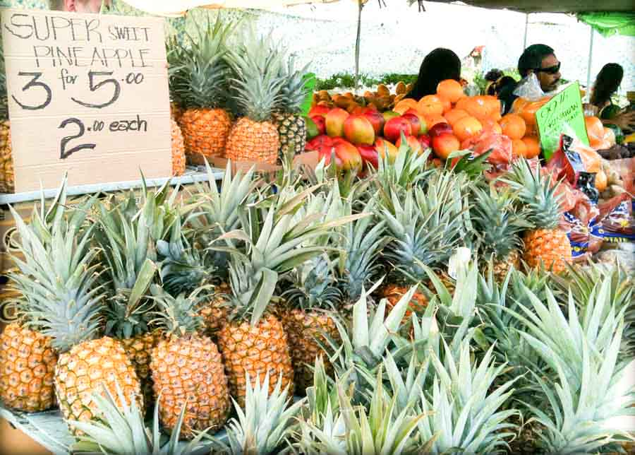 Paia Farmers Market and farm stands