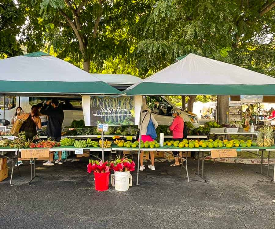 Check out the Kailua local farmers markets