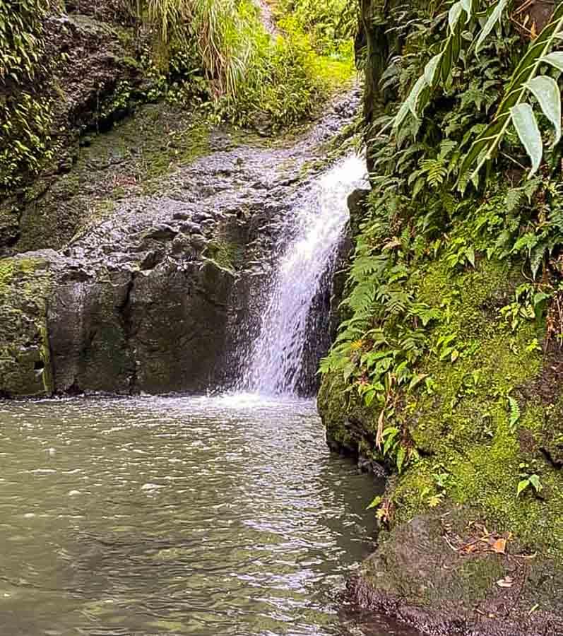Hike to Maunawili Falls outside Kailua