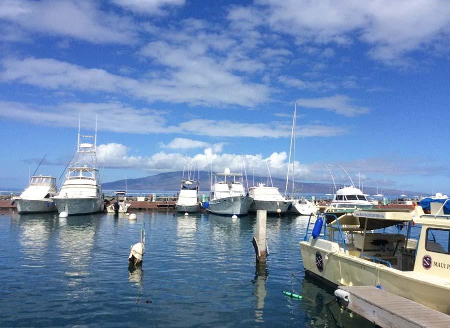 Sport fishing fun in Maui