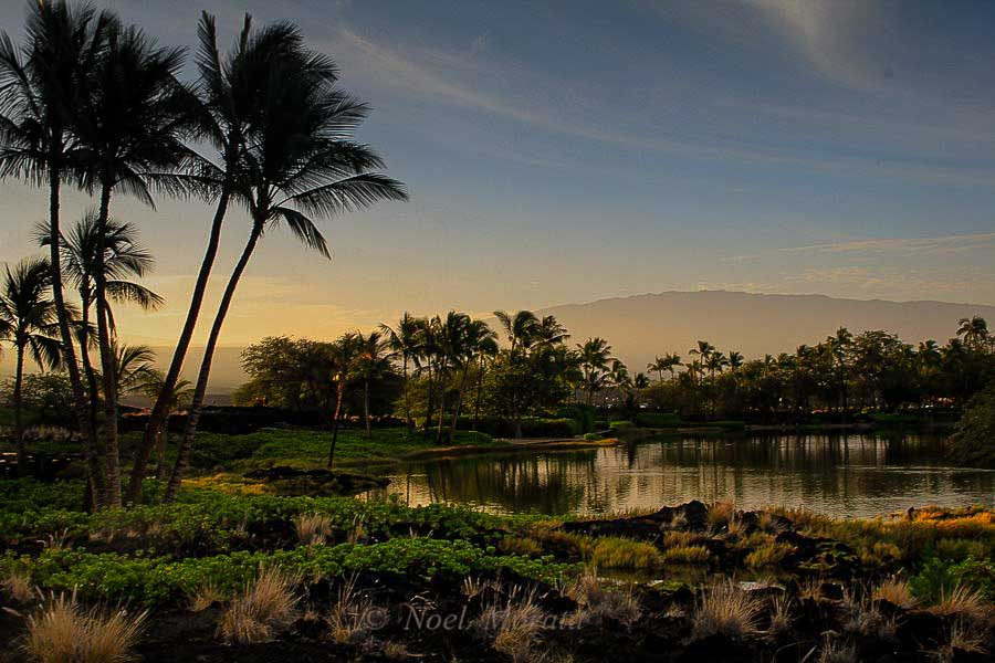 Explore the ancient fish ponds at A Bay fronting the Marriott