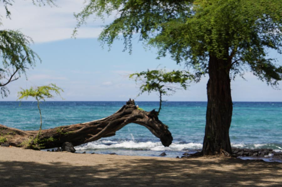 How to get to Waikoloa Village