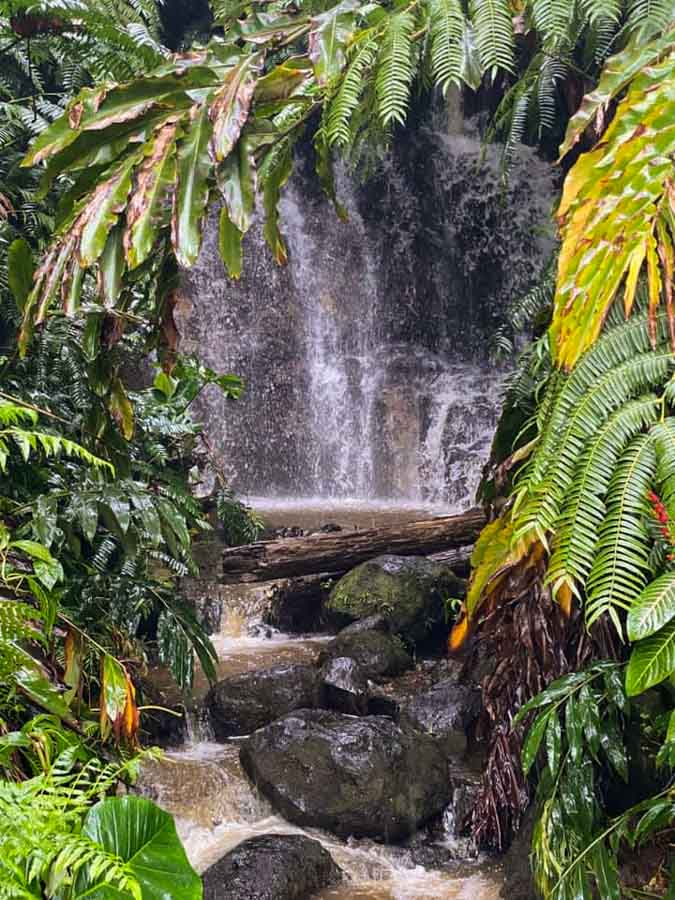 Conclusion on Akaka Falls